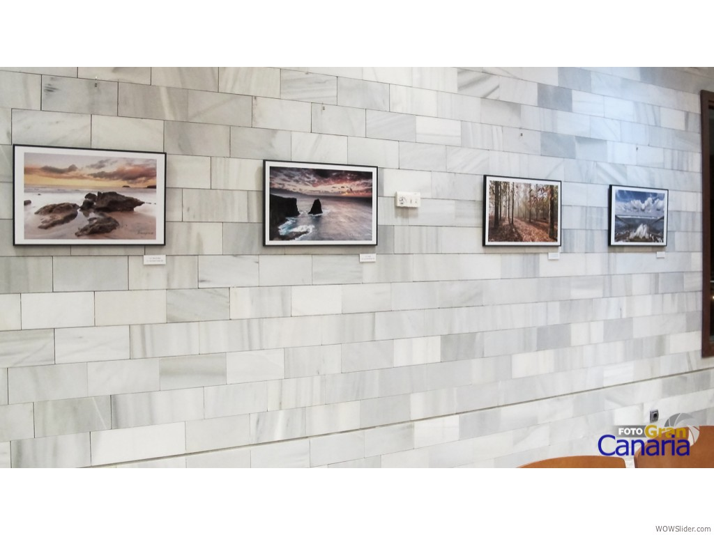 IMG_0040FGC Itinerante 2014 Biblioteca_