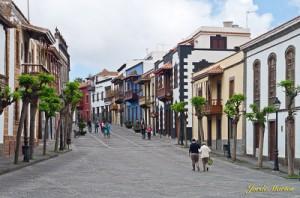 3931 Calle Mayor