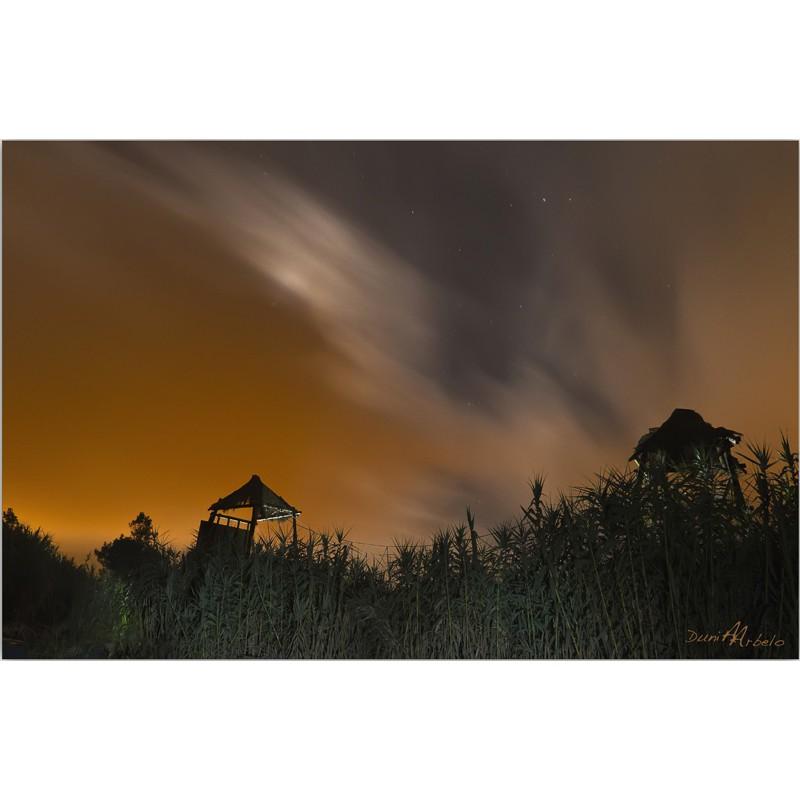Tirolina nocturna (Dunia Arbelo)
